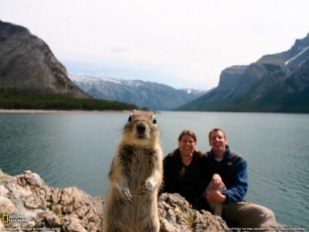 Banff tourism campaign