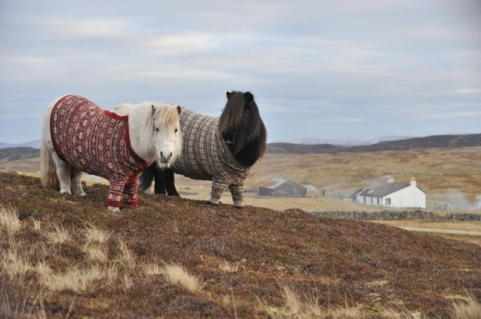 Scotland tourism campaign